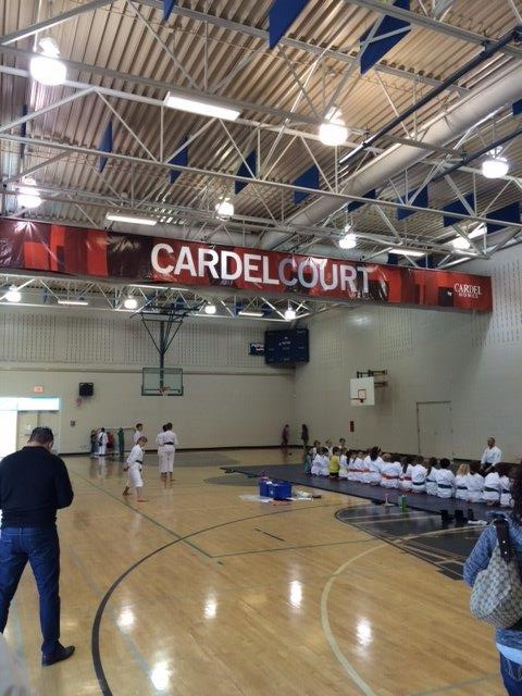 cardel court